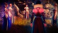The Witcher 3: Die Loge der Zauberinnen – Alles zu der großen Verschwörung