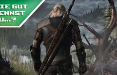 Wie gut kennst du The Witcher...