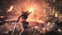 The Witcher 3 - Wild Hunt: Achtung, fehlerhafter DLC im Umlauf!