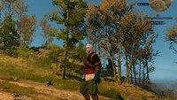 The Witcher 3 auf alten PCs: Mit dieser Mod bleibt ihr unter den Minimalanforderungen