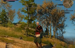 The Witcher 3 auf alten PCs...