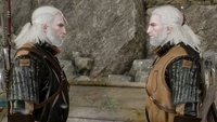 The Witcher 3 Walkthrough: Hexer-Auftrag - Ein flüchtiger Dieb (mit Video)