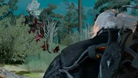 The Witcher 3 Walkthrough: Hexer-Auftrag - Hanna aus den Wäldern (mit Video)