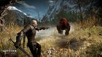 The Witcher 3 Walkthrough: Hexer-Auftrag - Teufel beim Brunnen