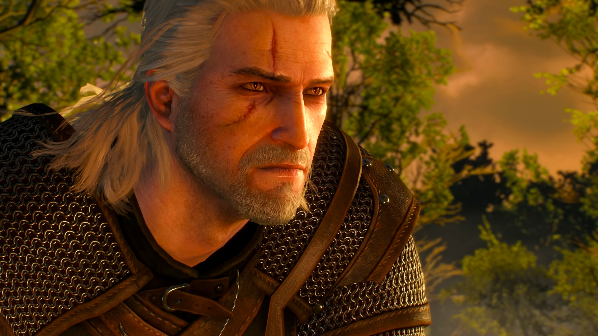 The Witcher Tipps
