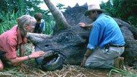 Was wurde aus dem Original-Cast von Jurassic Park?