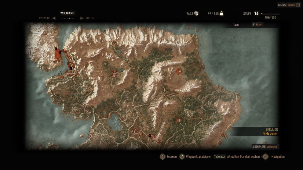 The-witcher-3-Gwint-Ard-Skellig01