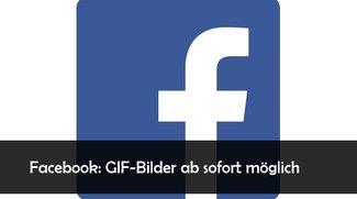 Facebook: GIFs in Kommentaren und in Posts verwenden - so klappts