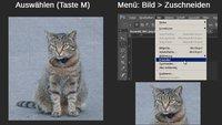 Photoshop: Bild zuschneiden – die besten 3 Methoden