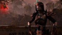 The Elder Scrolls Online: Optimale Rollen und Builds für Templer