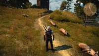 "The Witcher 3: DLC-Quest ""Gold der Trottel"" finden"