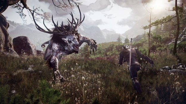 The Witcher 3 Wild Hunt: Mehr Gold und Erfahrung?
