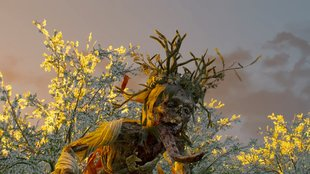 The Witcher 3 Walkthrough: Hexer-Auftrag - Die Weiße Dame (mit Video)