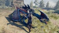 The Witcher 3 Walkthrough: Hexer-Auftrag - Drache (mit Video)