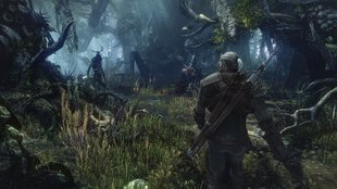 The Witcher 3 Walkthrough: Hexer-Auftrag - Monster im Wald