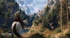 The Witcher 3: Pferde wechseln - geht das?