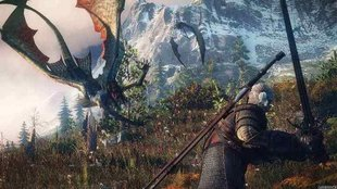 The Witcher 3 Walkthrough: Hexer-Auftrag - Vermisste Patrouille