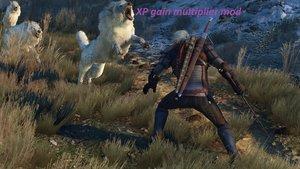 XP Gain Multiplier Mod für The Witcher 3: Wild Hunt
