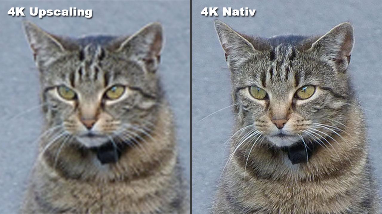 "Was ist Upscaling? Unterschied zwischen ""Natives 4K vs"