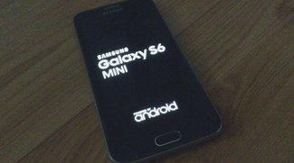 Samsung Galaxy S6 Mini: 4,6 Zoll-Smartphone bei Onlinehändler gelistet