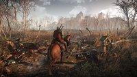 The Witcher 3 - Wild Hunt: Finisher-Moves im neuen DLC