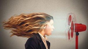 Die besten Ventilatoren 2019: Welchen Lüfter kaufen bei der Hitzewelle? – Ratgeber & Kaufberatung