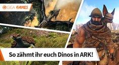 ARK - Survival Evolved: Dinos zähmen - Der ultimative Guide zum Reit- und Haustier