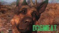 Fallout 4: Dogmeat - Alle Infos zum treuen Hundebegleiter