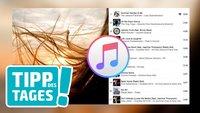 Wiedergabeliste in iTunes mit Foto individualisieren (Mini-Tipp)