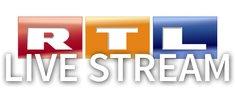 Dschungelcamp 2019 im Live-Stream und TV bei RTL: Infos zum Halbfinale