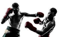 Boxen heute: Kraft-Brüder,...