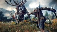 The Witcher 3: Das sind die Patch Notes zum Update 1.07