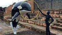 Banksy's Dismaland: Disneyland mit Flüchtlingsbooten und Leichen. Ein Spaß für die ganze, kaputte Familie