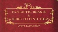 Phantastische Tierwesen: Harry Potter-Spin-off beginnt Dreharbeiten & gesamter Cast enthüllt