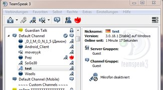TeamSpeak Server - Dein ganz privater TS Server