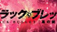 Black Bullet: Stream - Die Anime-Serie legal Online schauen