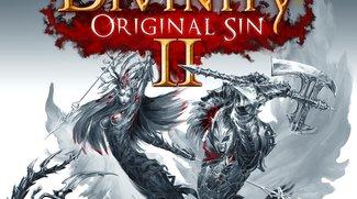 Divinity - Original Sin 2: Offiziell angekündigt, Kickstarter-Finanzierung