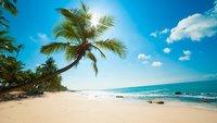 Beach Inspector: Suchmaschine für Strand und Meer