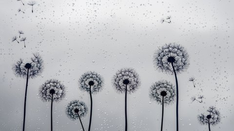 Dandelion Dandelion Tattoo Meaning And 20