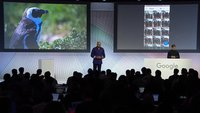 Google Fotos erhält gemeinsame Alben, Chromecast-Support und Personen-Markierung