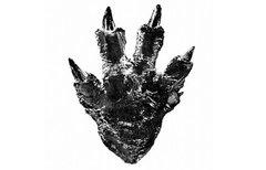 Godzilla kehrt 2016 zurück!...