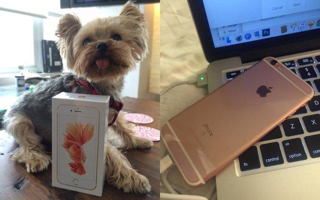 iPhone 6s auch ohne Reservierung im Apple Store - Amerikanerin hatte schon Post
