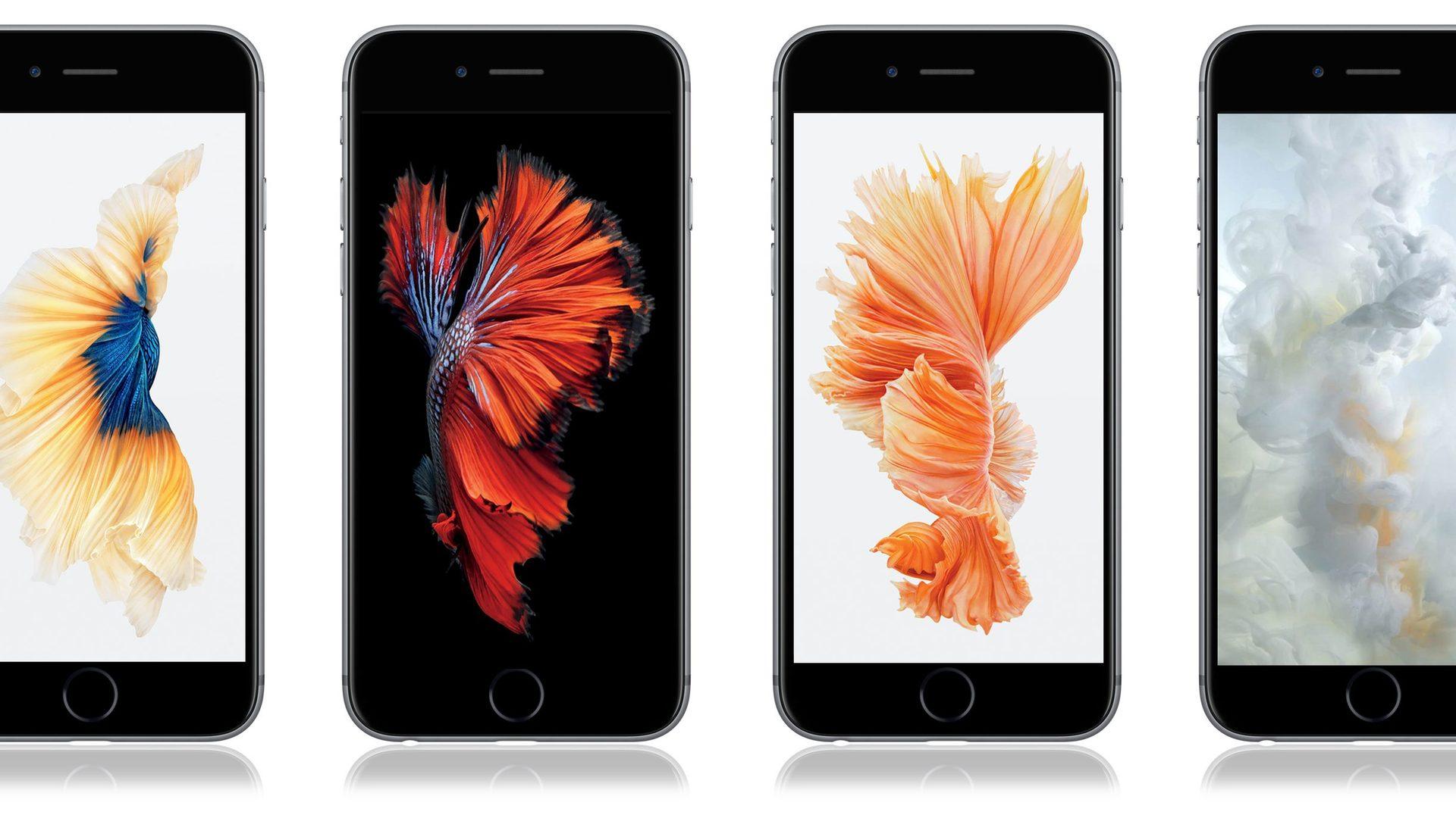 iPhone 21s Wallpaper zum Download Diese gibt's nicht in iOS 21