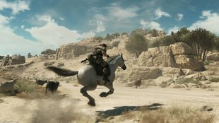 MGS 5 - The Phantom Pain: D-Horse im Buddy-Guide - alle Infos zum treuen Ross