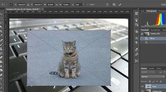 Photoshop: Bild einfügen – So geht's