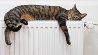 Heizkosten sparen: Mollig, aber bezahlbar - 12 Tipps für günstige Wärme