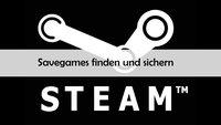 Steam: Savegames finden und sichern – in welchem Ordner sind die Spielstände?