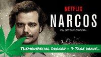 Narcos Staffel 2: Was wir schon wissen