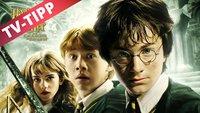 Harry Potter und die Kammer des Schreckens im Stream online: Heute auf Sat.1 im TV