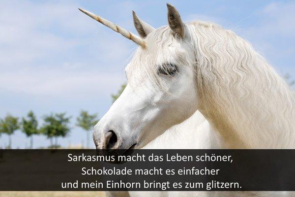 Coole pferde status sprüche